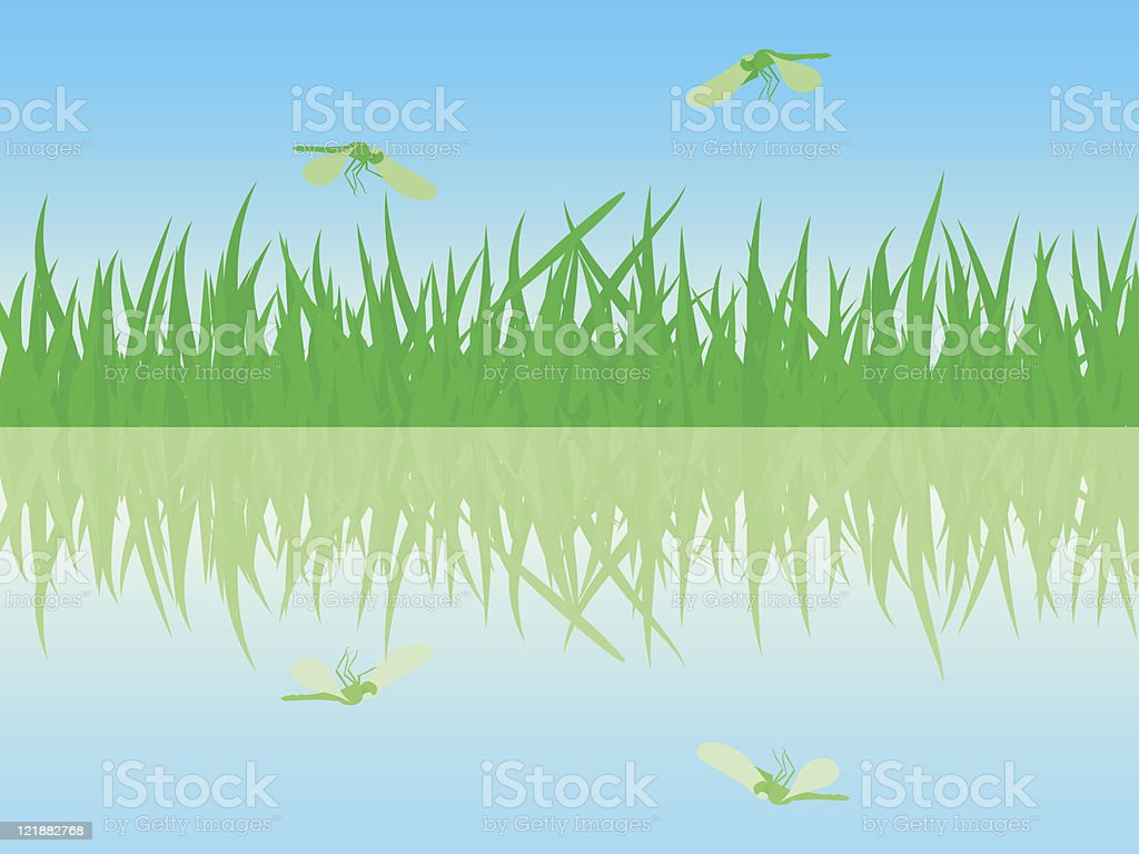 The beautiful summer waterside with dragonflies. royalty-free stock vector art