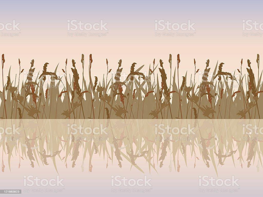 The beautiful sunset meadow waterside. royalty-free stock vector art