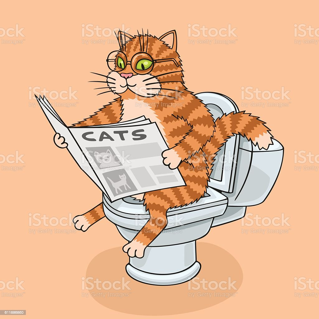 The cat in the toilet. vector art illustration