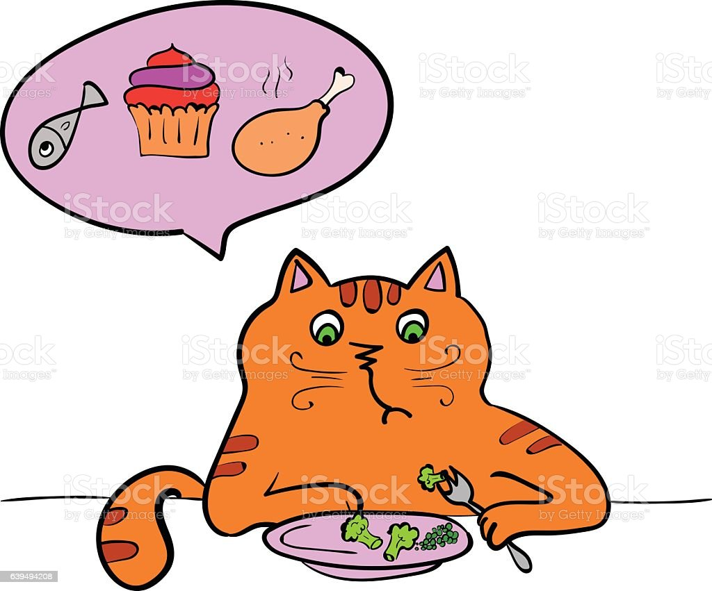 The cat is a vegetarian. Vector illustration  diet, angry animal vector art illustration