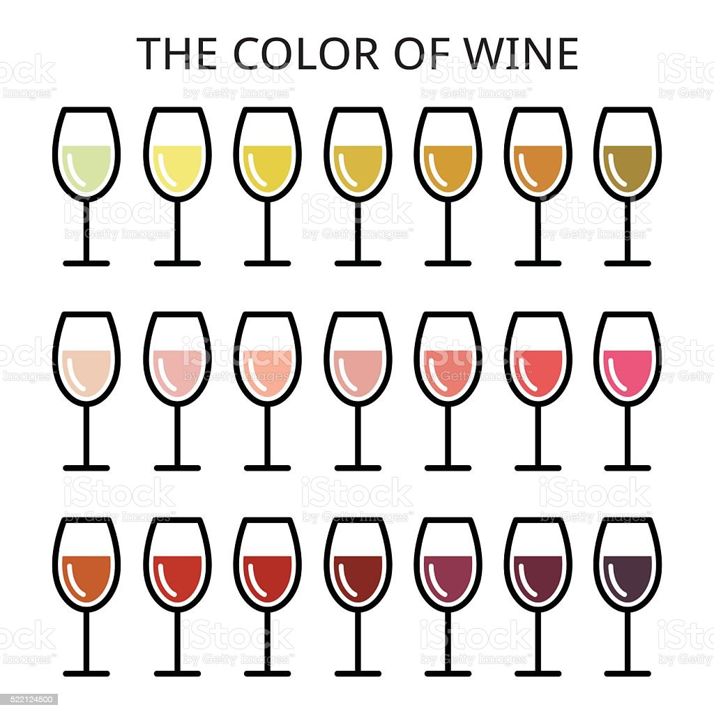 The color of wine - different shade of wine vector art illustration