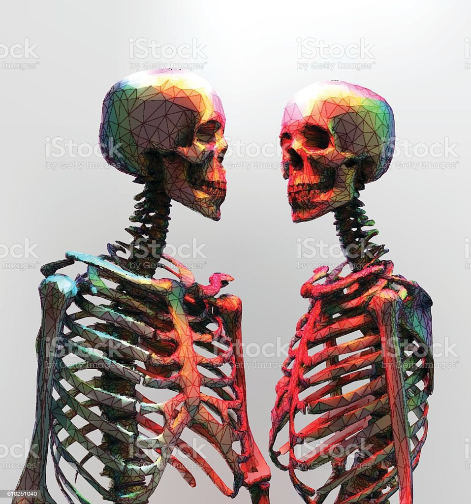 The couple of polygonal skeleton in rainbow color light vector art illustration