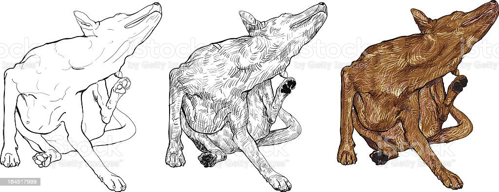 The dog is scratching itself. royalty-free stock vector art