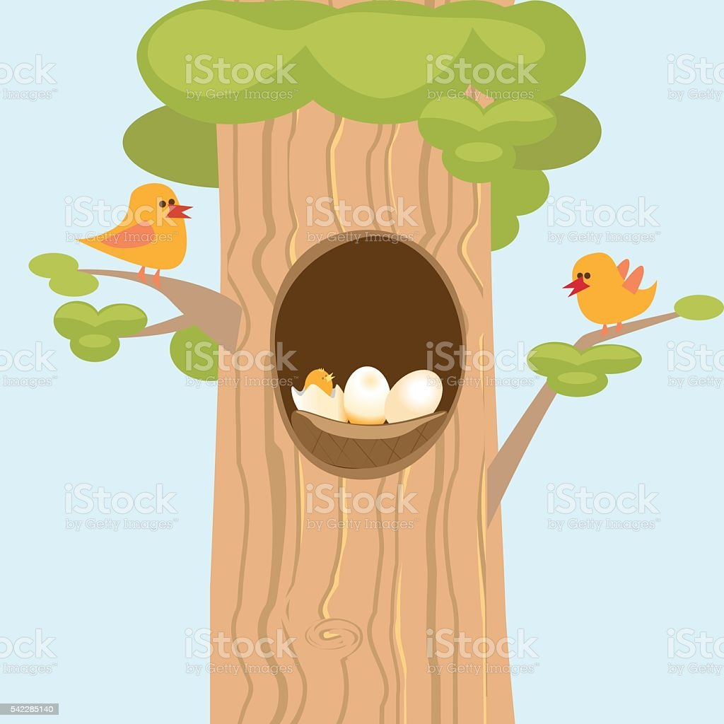 the family of birds and hollow with Chicks royalty-free stock vector art