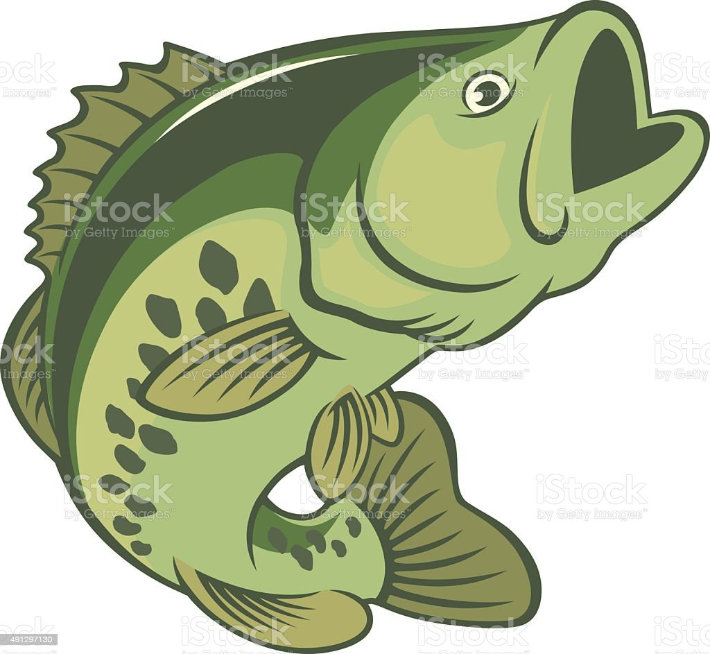 The figure shows a fish bass vector art illustration