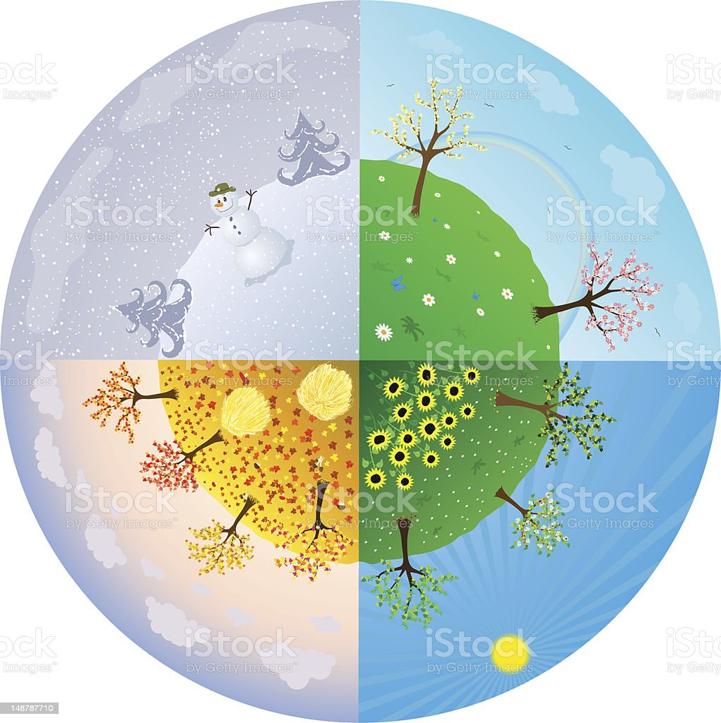 The four seasons in one circle royalty-free stock vector art