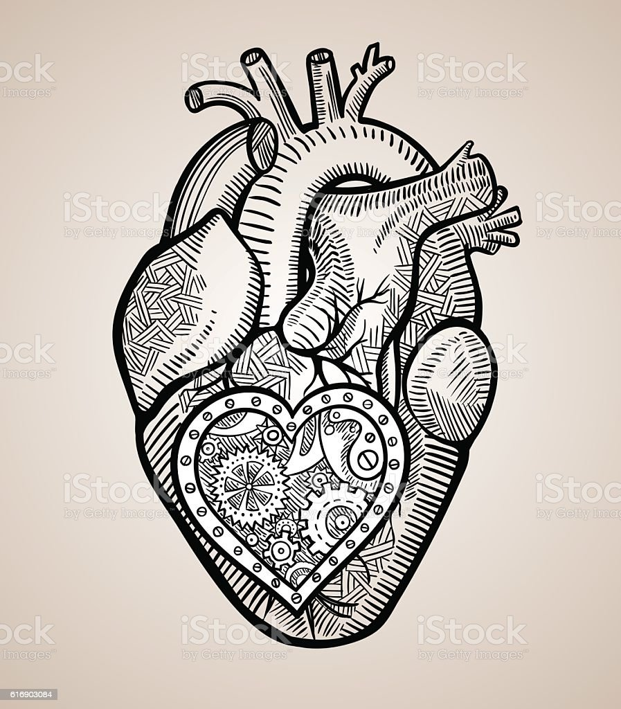 the human heart with a mechanical heart inside stock vector art, Muscles