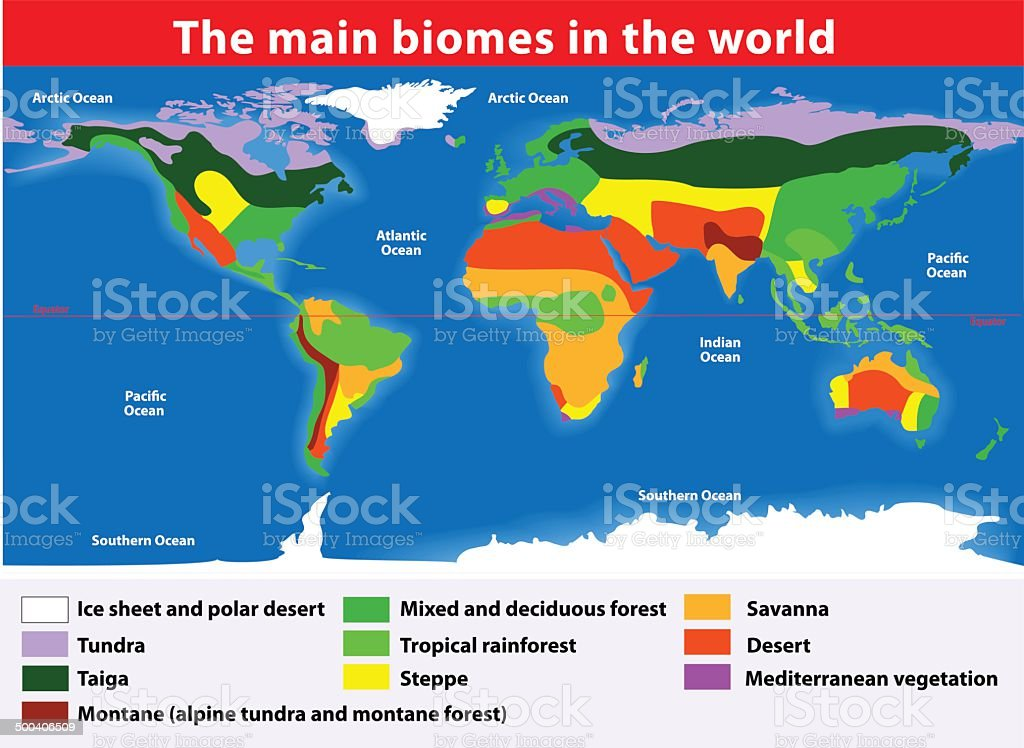 The main biomes in the world vector art illustration