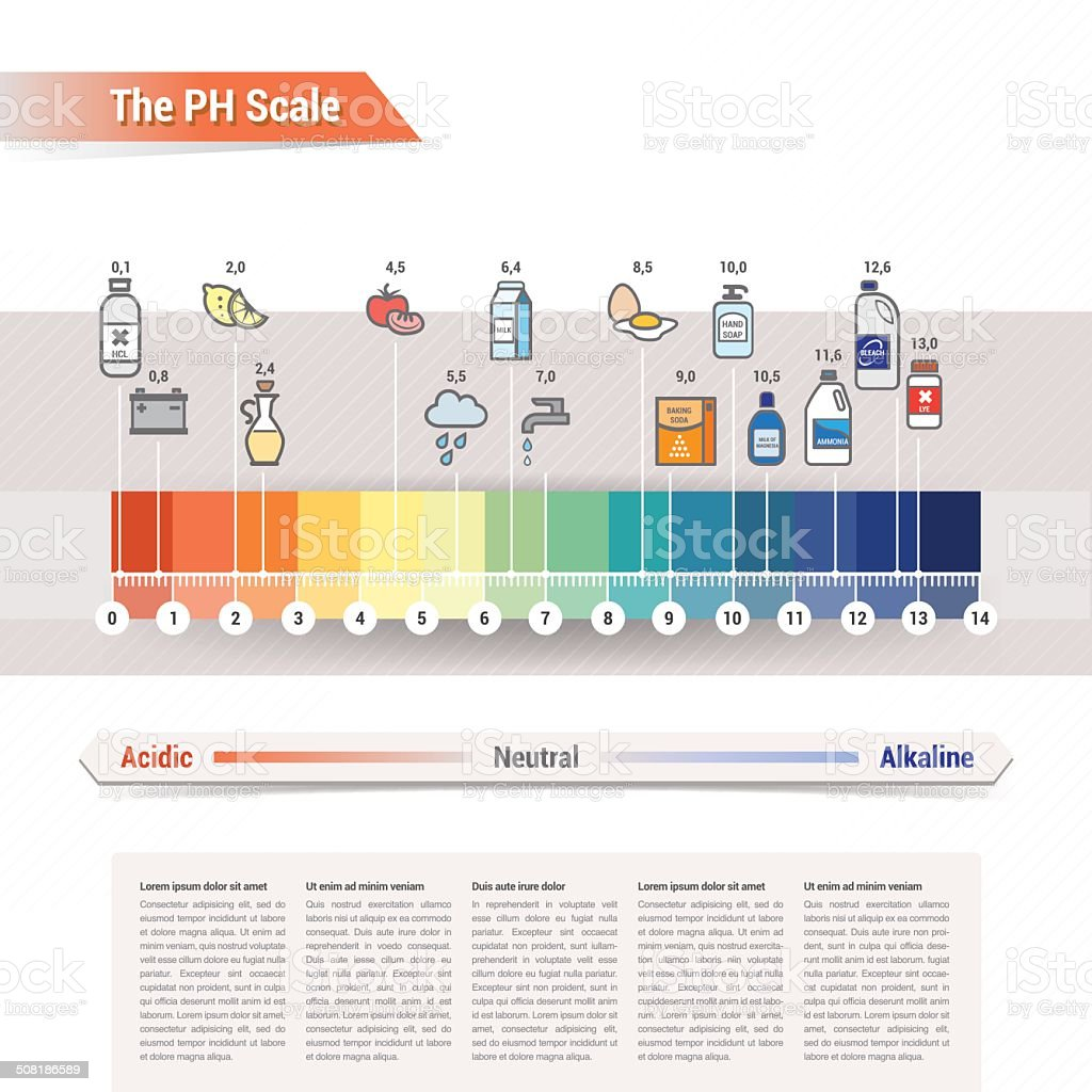 The PH scale vector art illustration