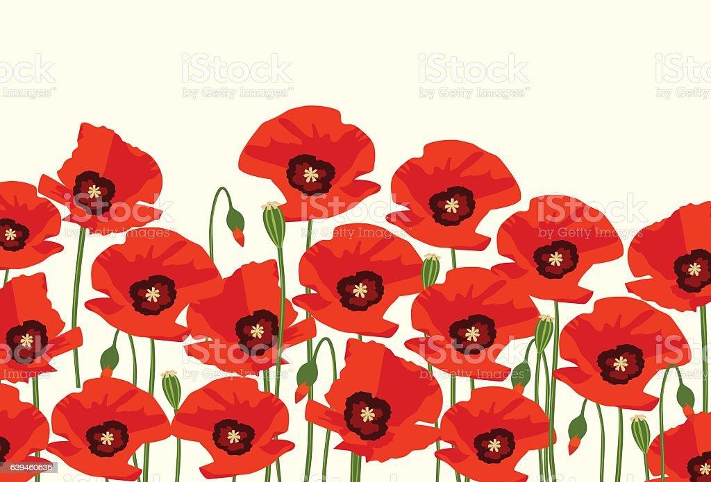 The poppy flowers vector art illustration
