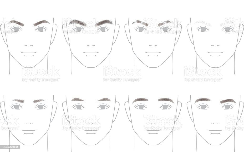 The shape of the eyebrows of men vector art illustration