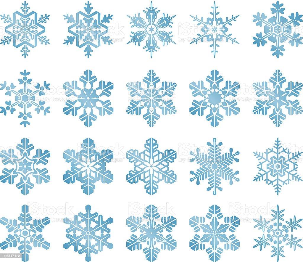 The Snowflakes vector art illustration
