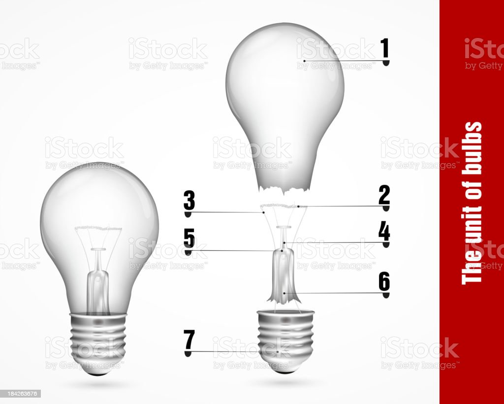 The unit of bulbs royalty-free stock vector art
