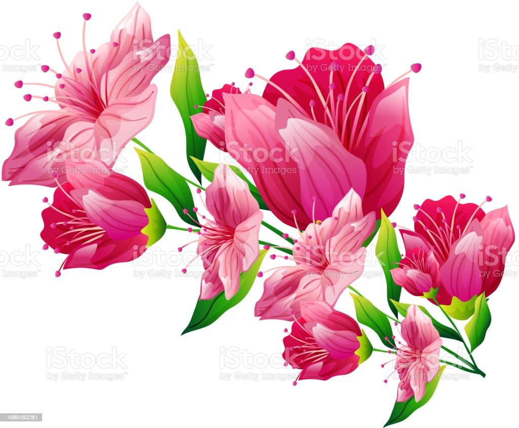 The view of flowers vector art illustration