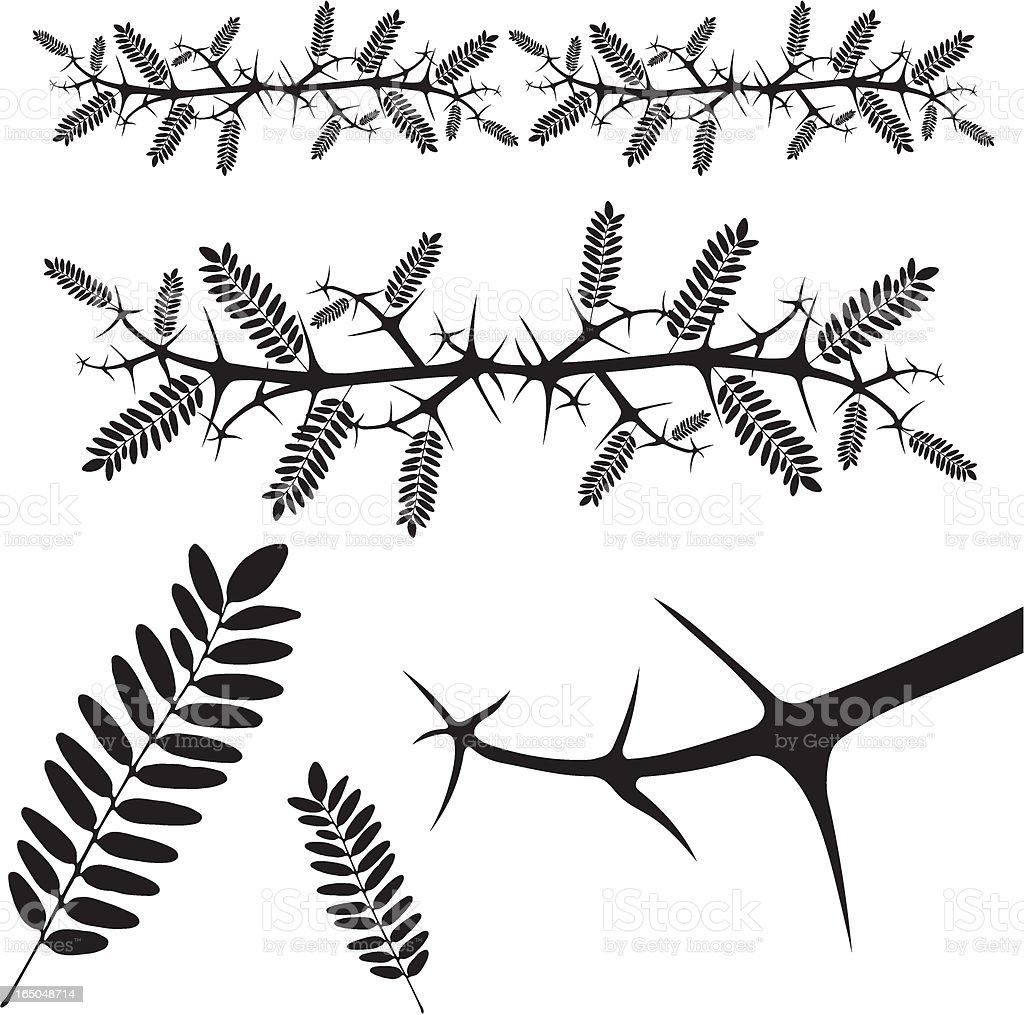 thorn - vector royalty-free stock vector art