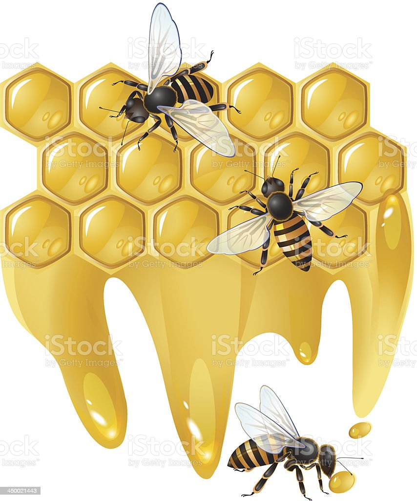 Three bees and honeycombs royalty-free stock vector art