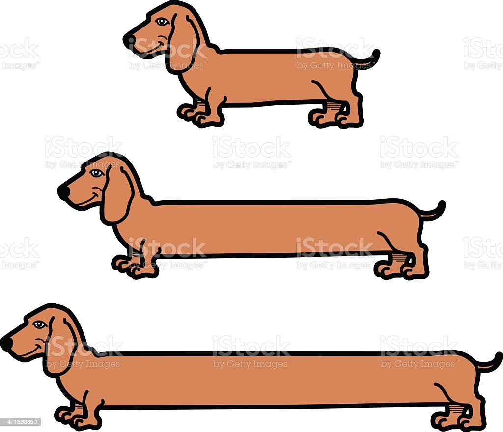 Three Dachshunds vector art illustration