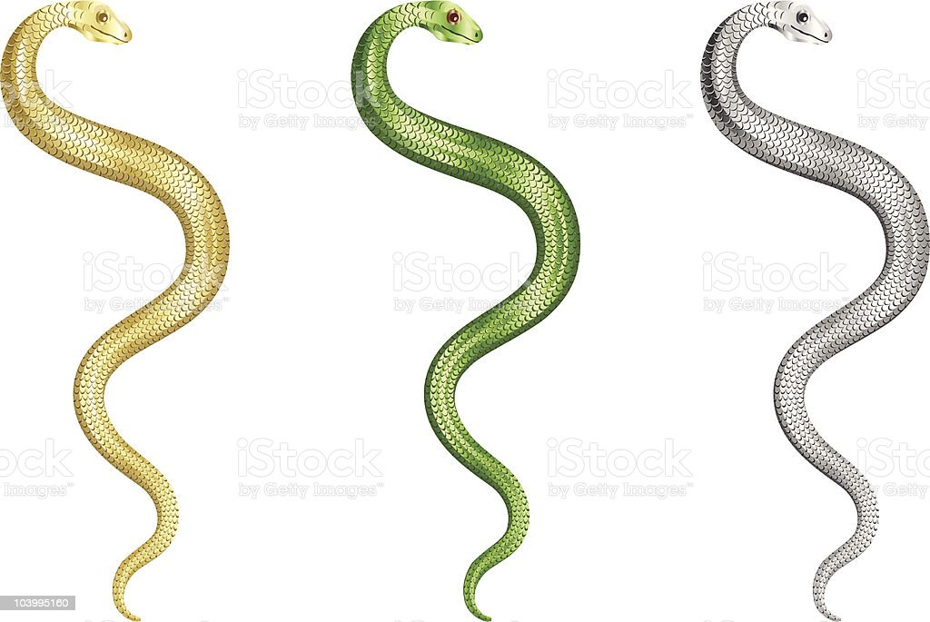 three different color snakes on whitei internet background royalty-free stock vector art