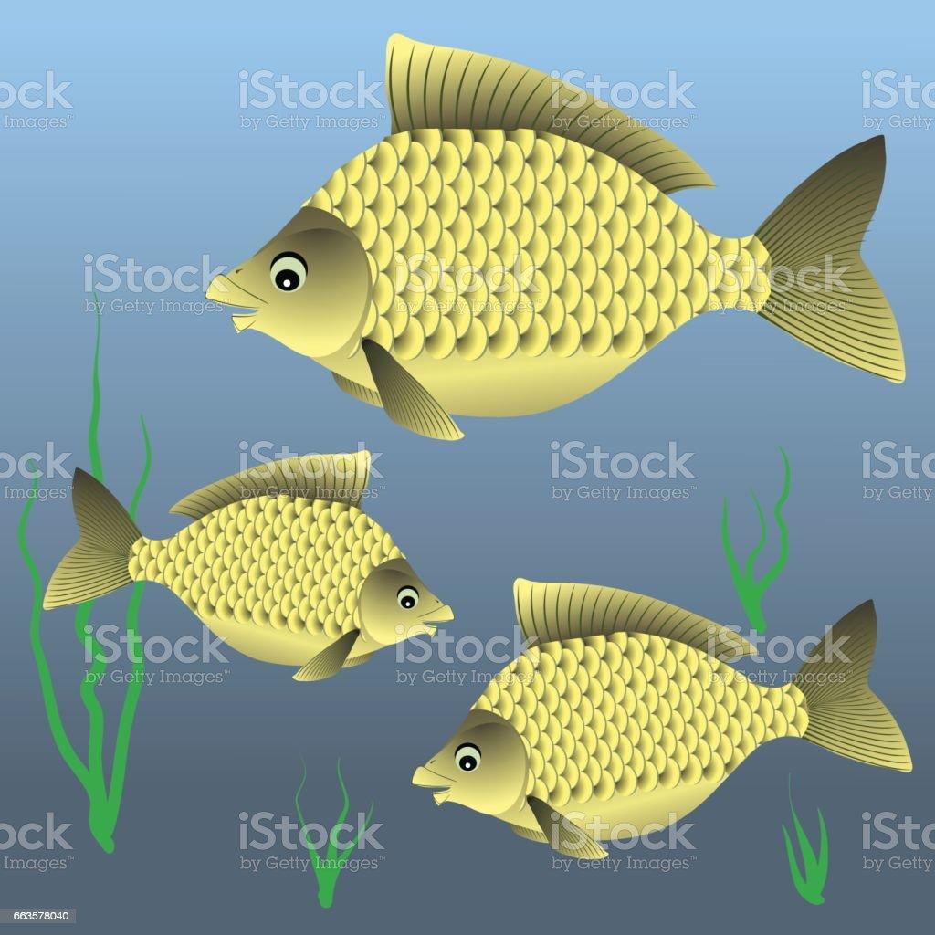 Three Fishes Swim vector art illustration