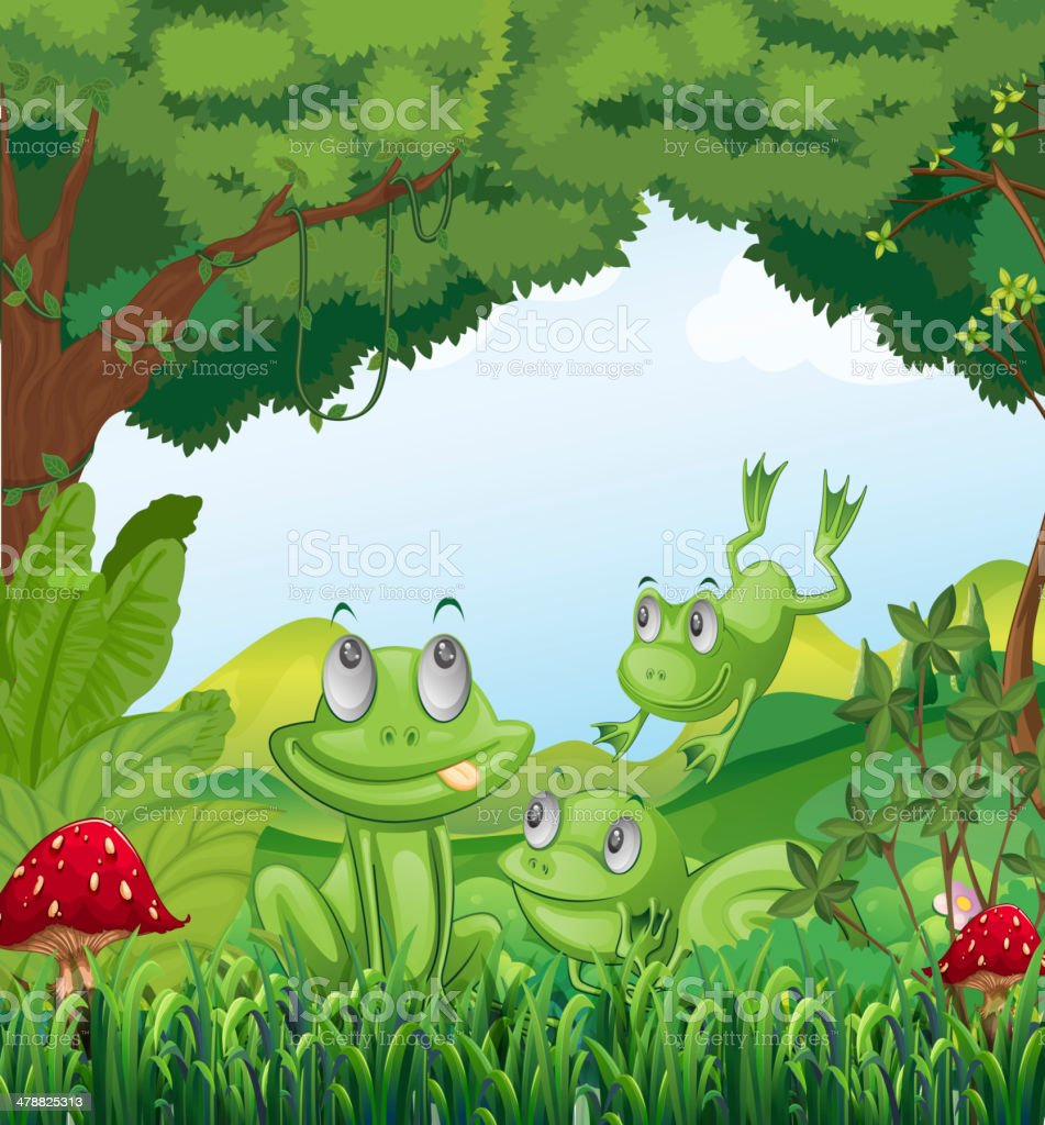 Three frogs at the forest royalty-free stock vector art