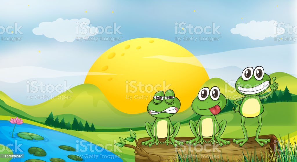 Three frogs at the riverbank royalty-free stock vector art