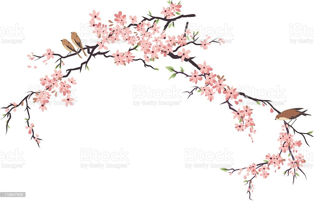 Three Little Birds Perching and Cherry Blossoms Branches vector art illustration