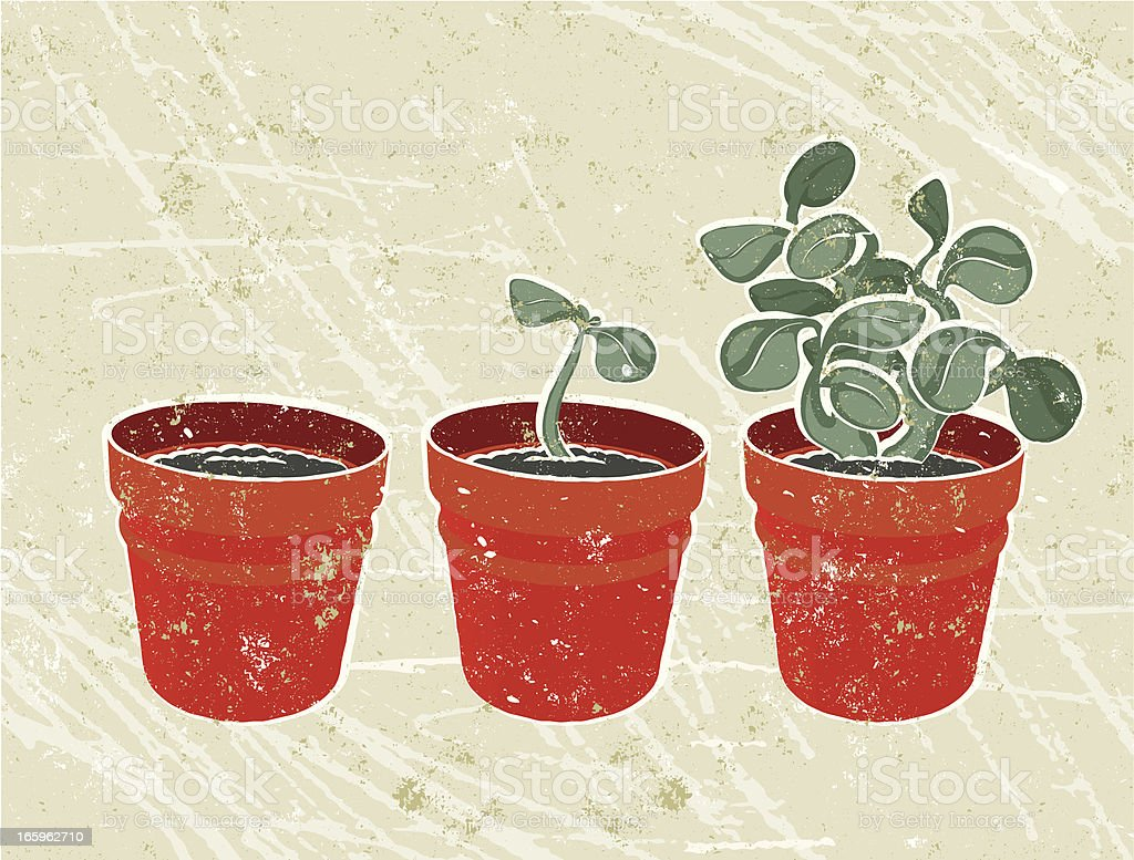Three plant Pots - growth royalty-free stock vector art