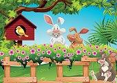 Three rabbits in the garden