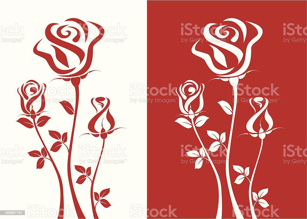 Three Roses vector art illustration