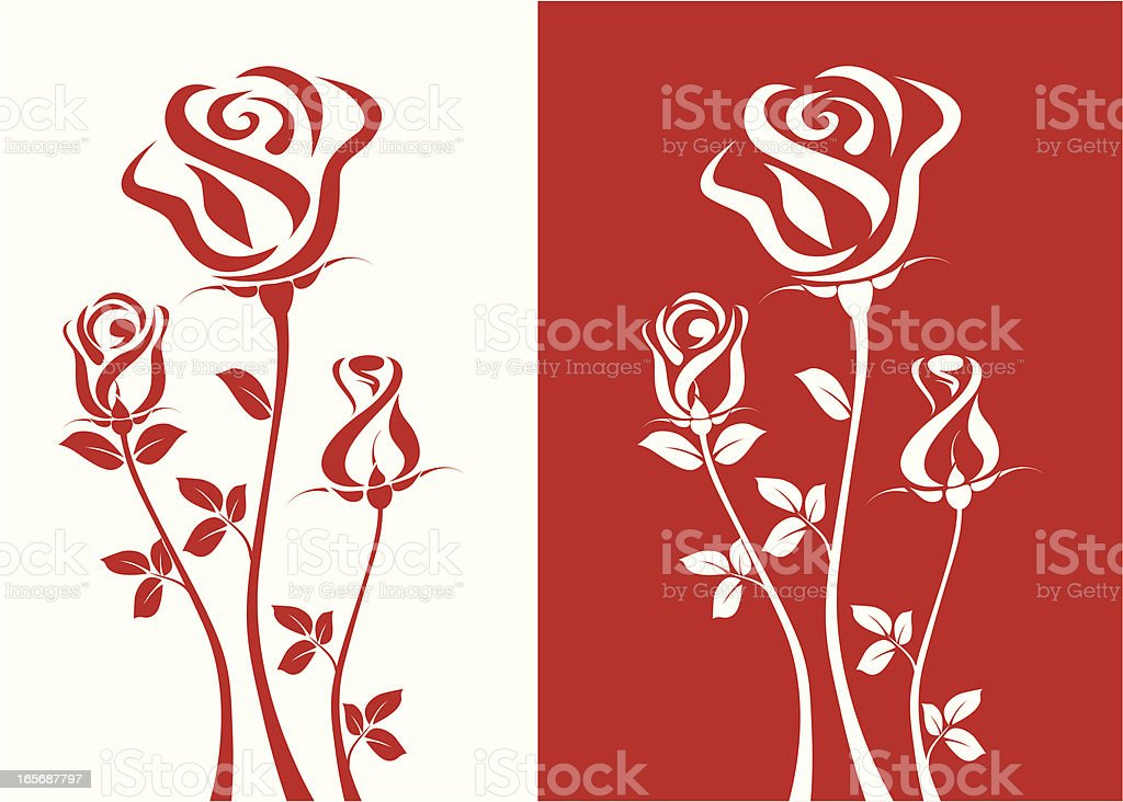 Three Roses vector art illustration