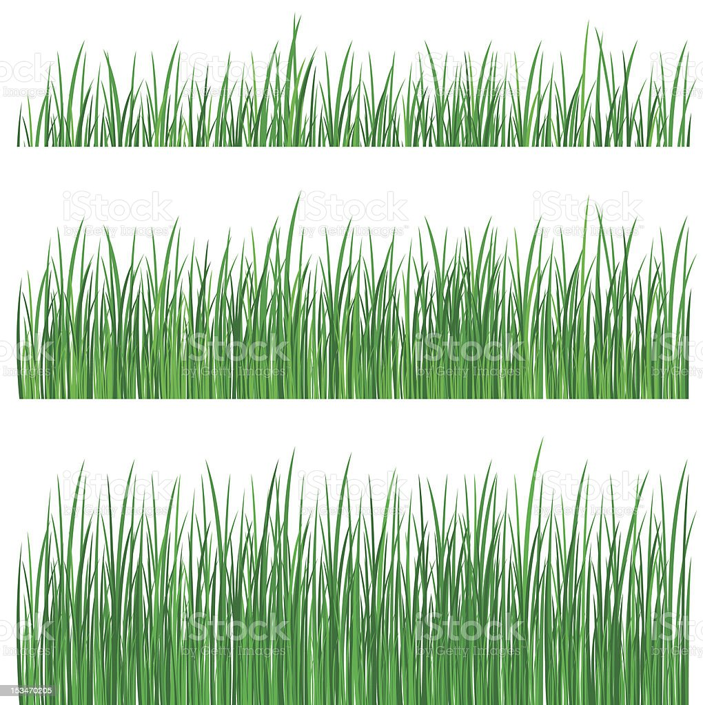 Three rows of grass of different lengths vector art illustration