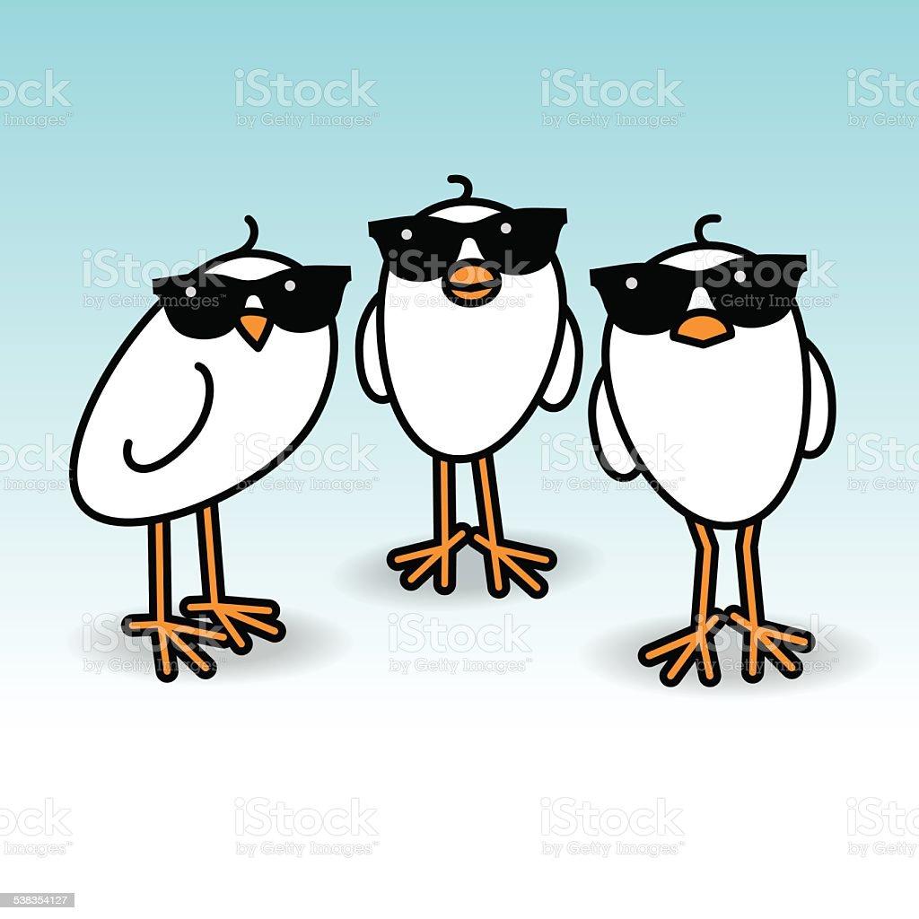 Three Staring White Chicks Wearing Sunglasses vector art illustration
