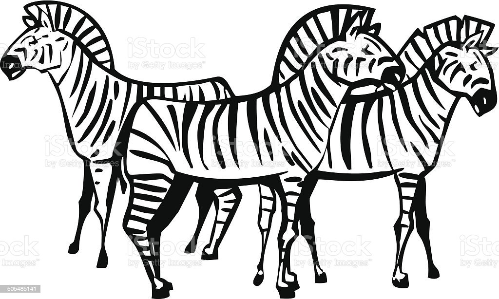 Three Zebras royalty-free stock vector art