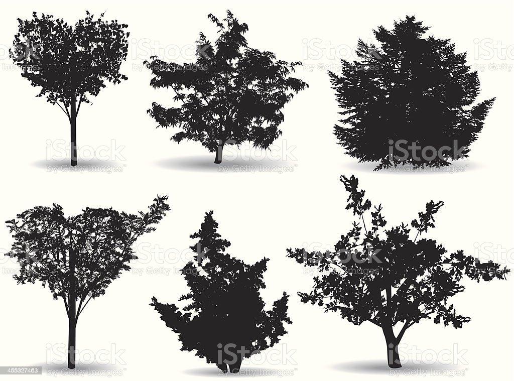 Tidy trees royalty-free stock vector art