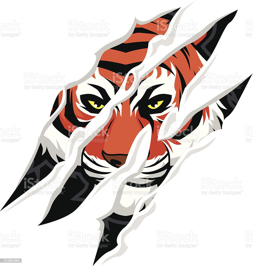 tiger claw mark vector art illustration