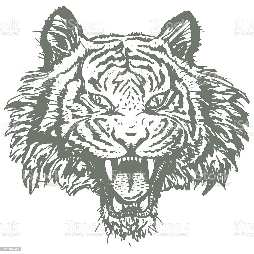 tiger face hand drawn logo sketch style nature and animals stock