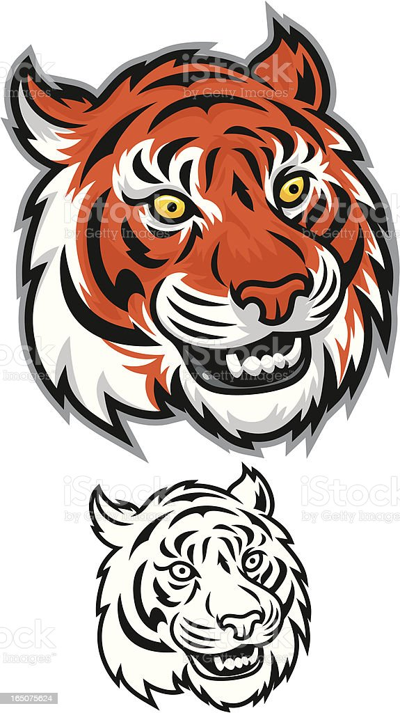 Tiger Growl royalty-free stock vector art