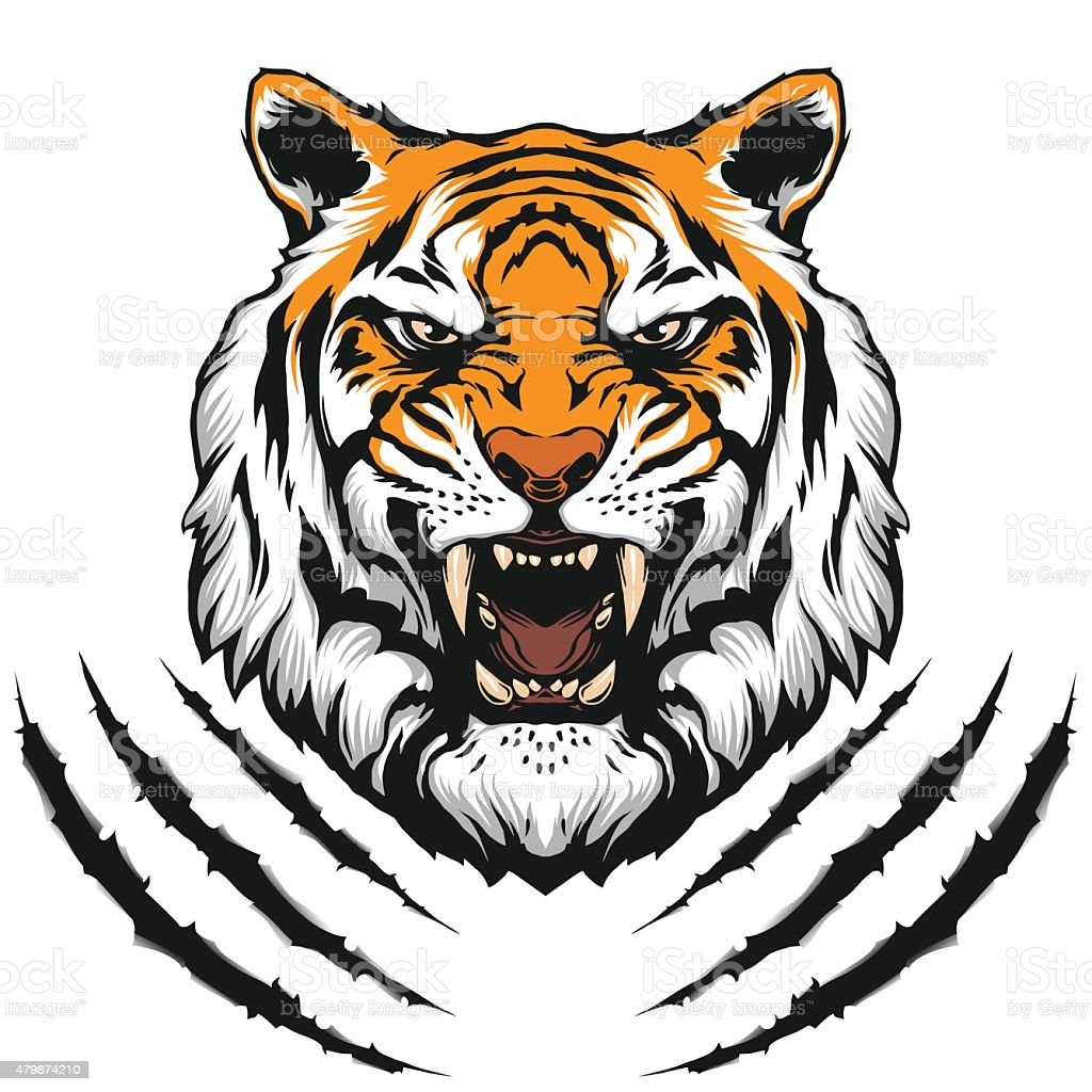 Tiger head illustration vector art illustration