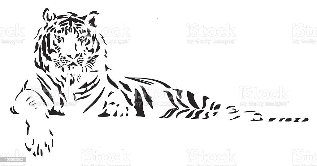 Tiger illustration in black lines royalty-free stock vector art