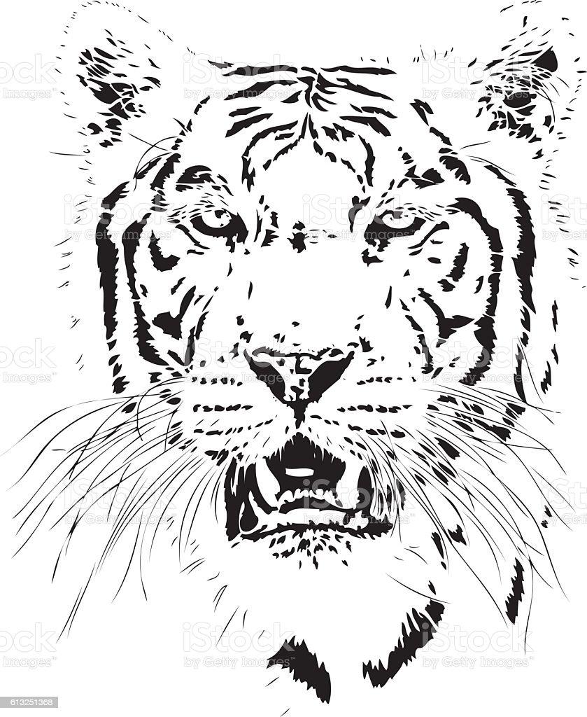 Tiger illustration vector art illustration