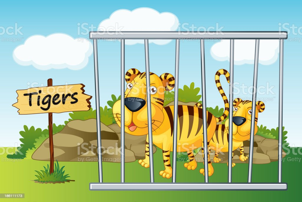 tiger in cage royalty-free stock vector art