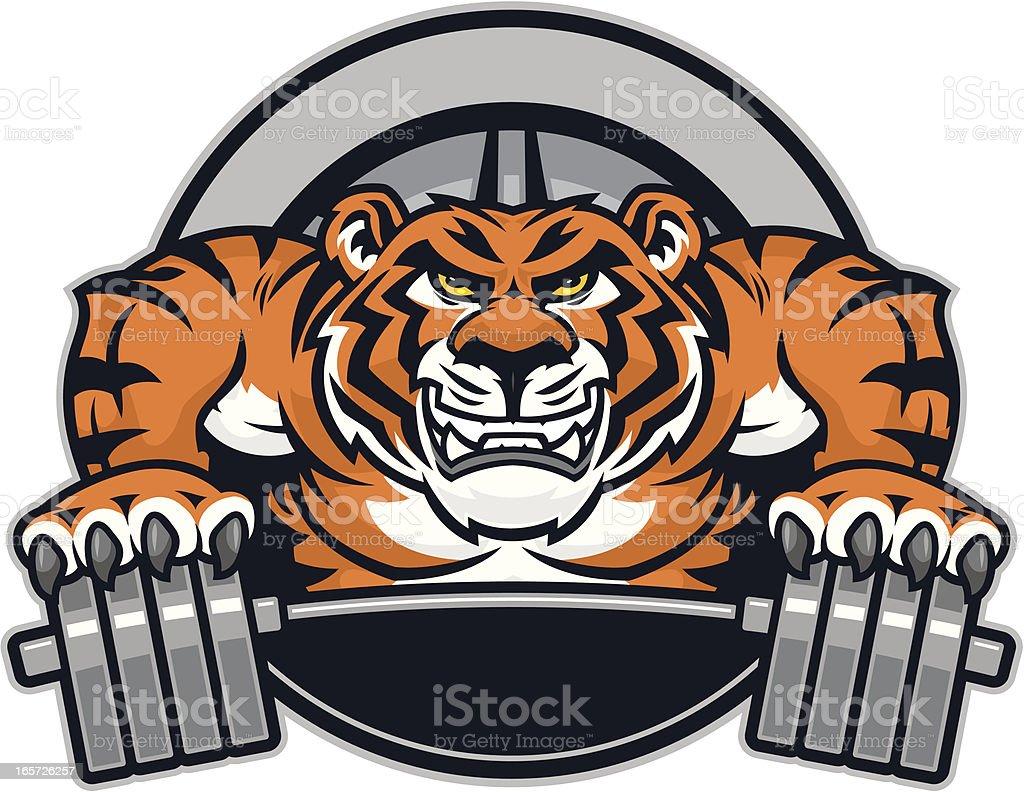 Tiger Mascot Crush royalty-free stock vector art