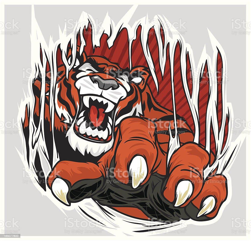 Tiger Ripping through Shirt royalty-free stock vector art