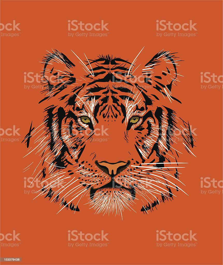 Tiger vector art illustration
