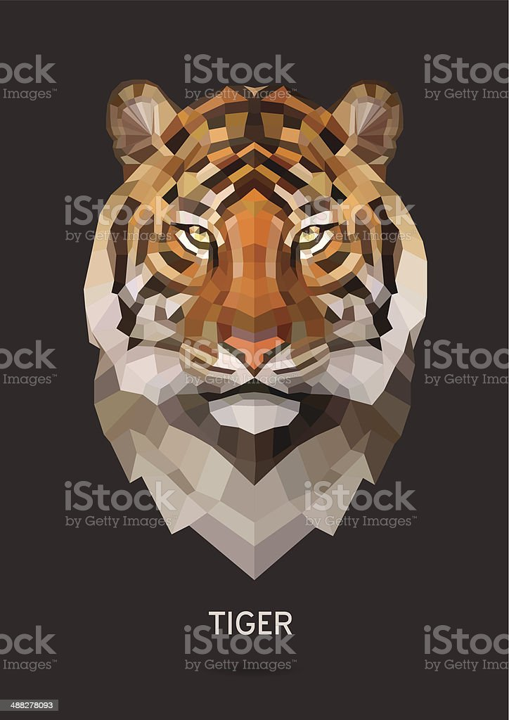 Tiger vector vector art illustration