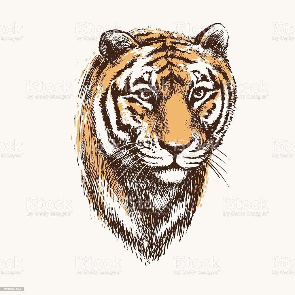 Tiger-1 vector art illustration