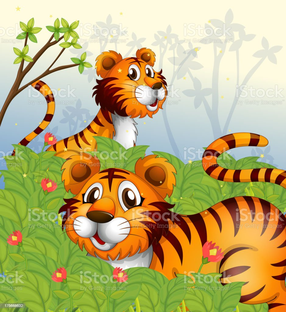 Tigers in the woods royalty-free stock vector art