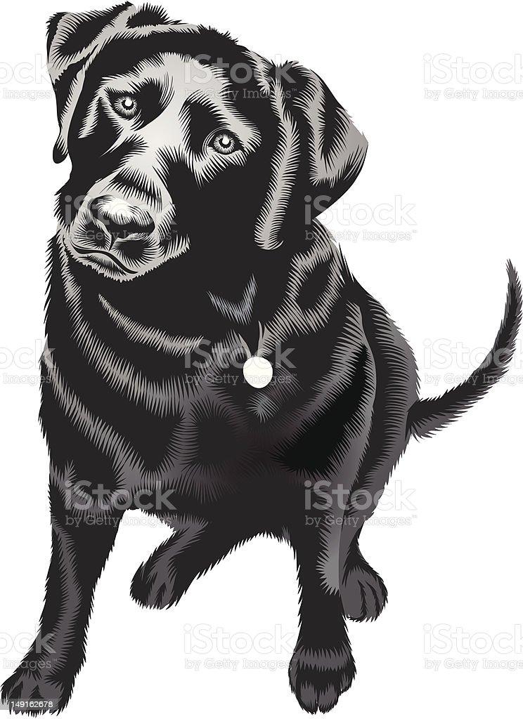 Tiki the Wonder Dog vector art illustration