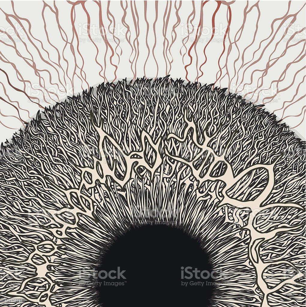 Tired human eye. Hand drawn iris detail. vector art illustration