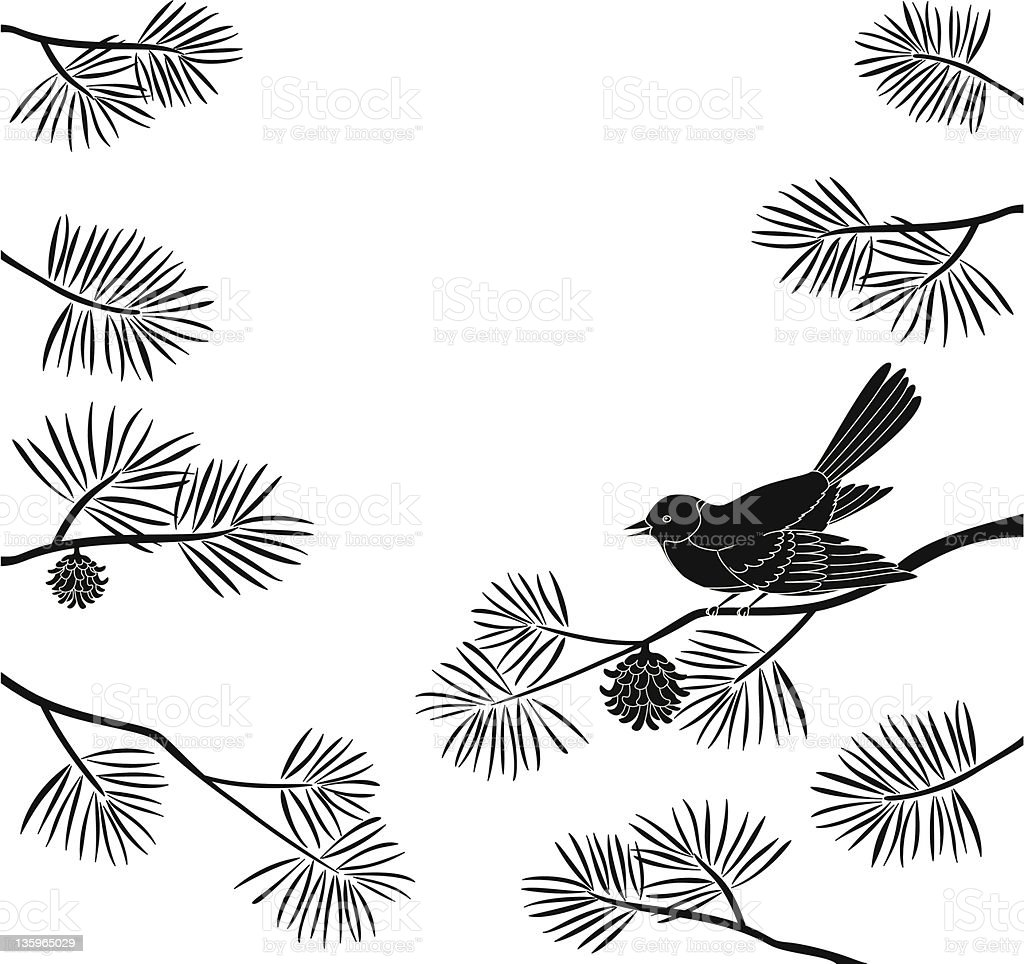 Titmouse on pine branch, cutout royalty-free stock vector art